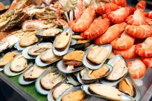 Seafood-Expo