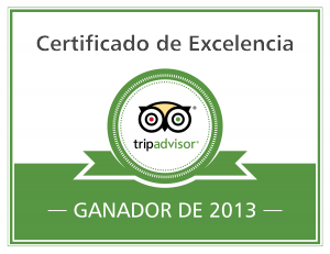 excellence-badge_2013_es